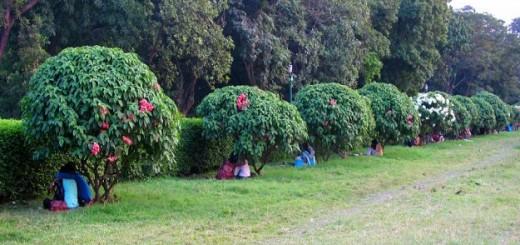 indian-parks