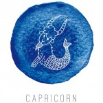 Capricorn love life 2015: What does your Zodiac sign say about your love life next year?