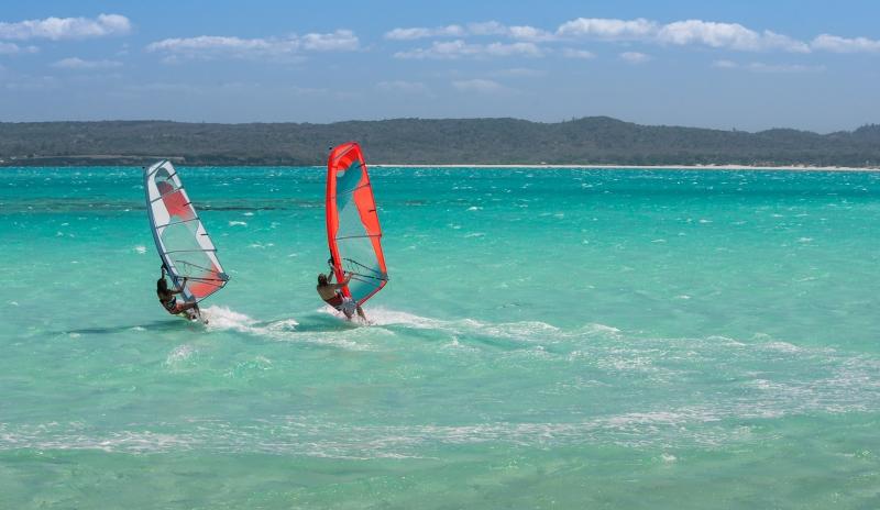 couple windsurfing