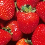 Amazing Benefits Of Strawberries For Your Skin, Hair, And Health