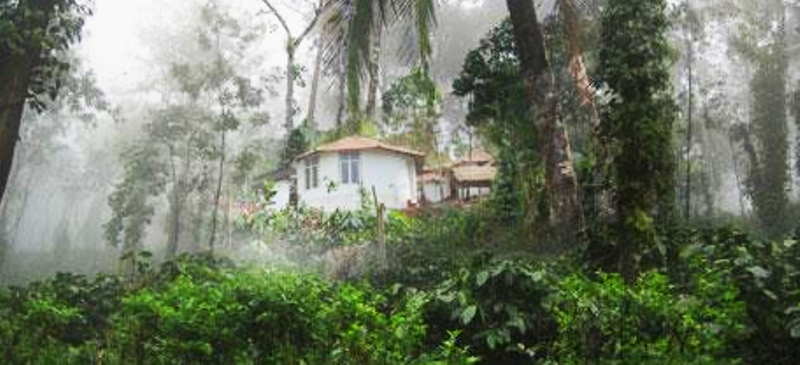 yedamakky cottage, coorg