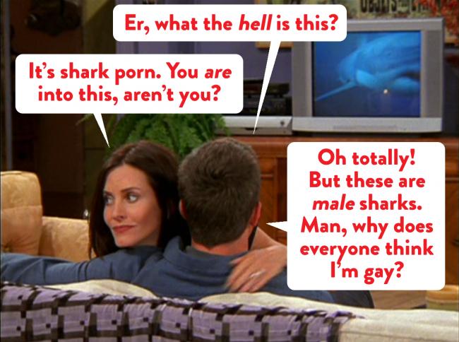 monica and chandler shark porn