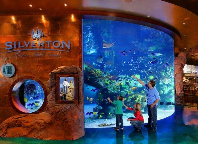 saltwater aquarium at the silverton casino