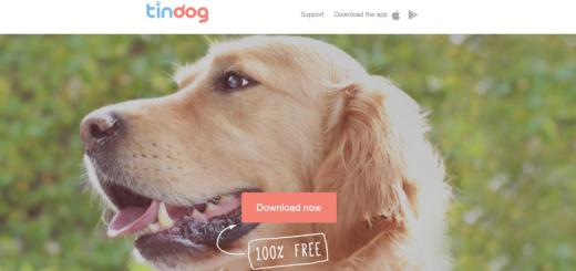 tindog home page