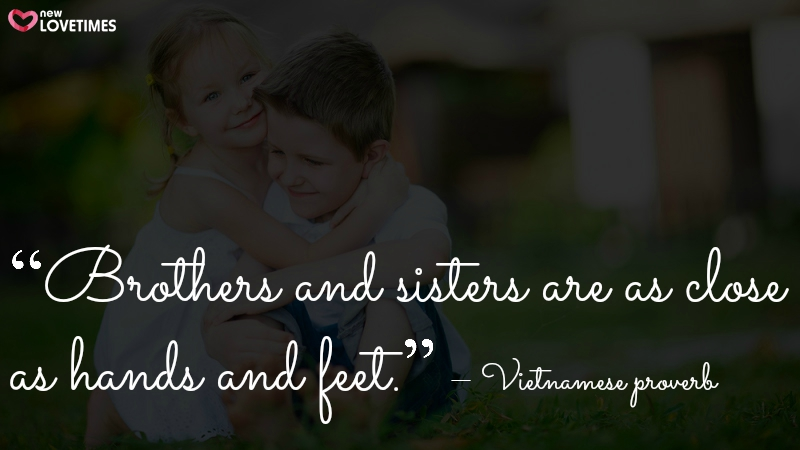Brother And Sister Love Quotes Fair 20 Raksha Bandhan Quotes For Brothers & Sisters In English  New