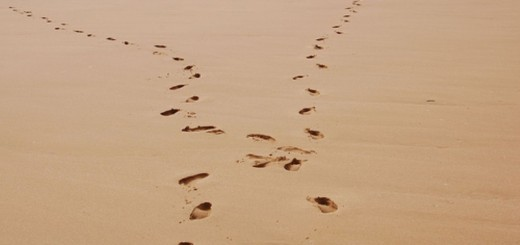 footprints diverging in different directions