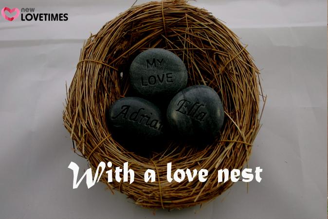41 love nest 41