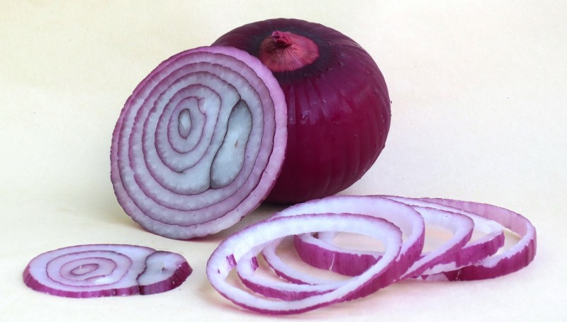onion_New_Love_Times
