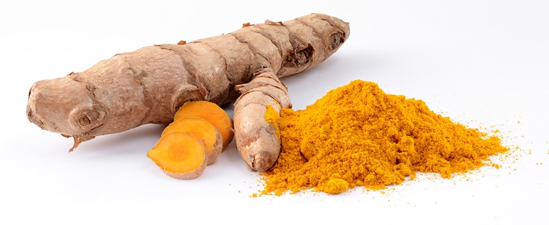 turmeric_New_Love_Times