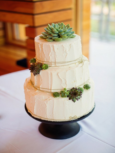 Frosted cake with cacti detail