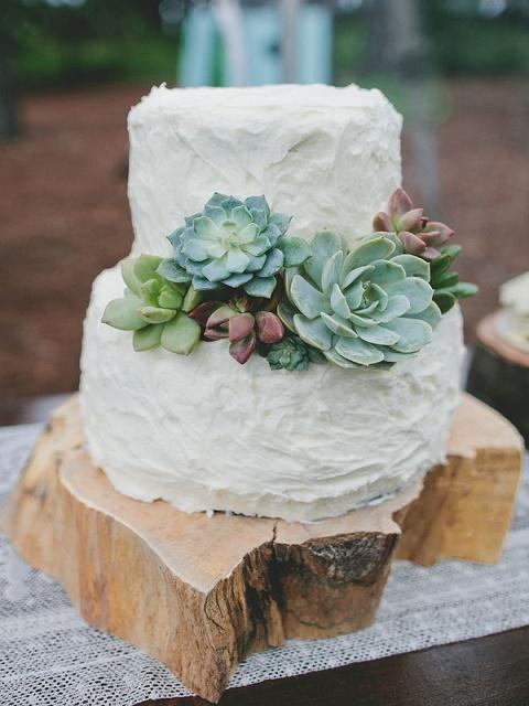 Messy cacti cake