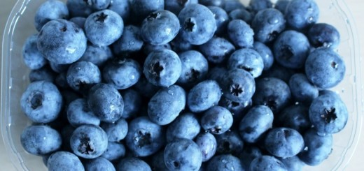 blueberries_New_Love_Times