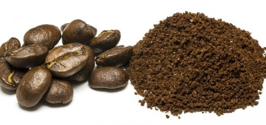 coffee powder_New_Love_Times