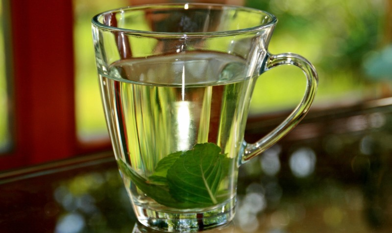 peppermint tea_New_Love_Times