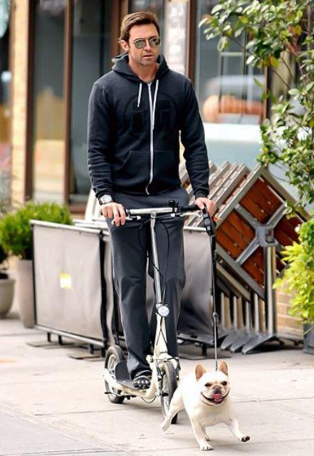 celebrity pet hugh jackman_New_Love_Times