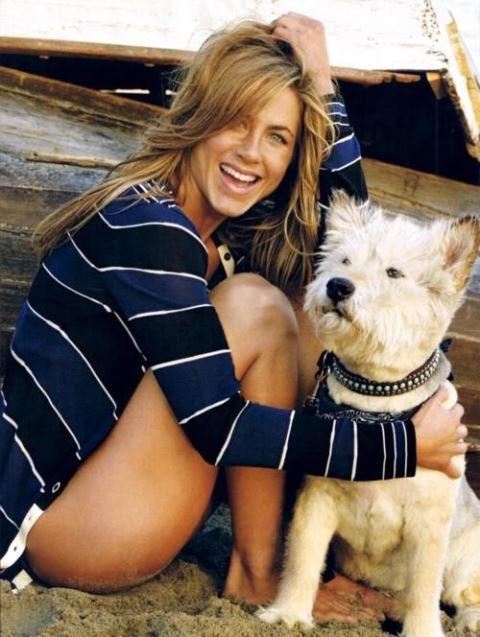 celebrity pet jennifer aniston_New_Love_Times