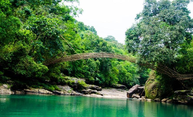 bamboo bridge, meghalaya_New_Love_Times