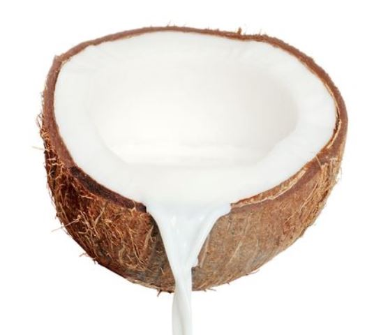 coconut milk_New_Love_Times