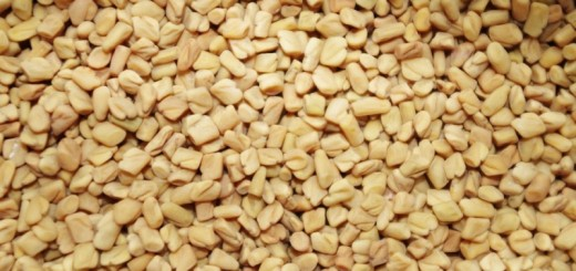 fenugreek seeds_New_Love_Times