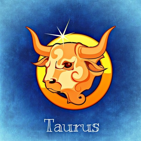 taurus_New_Love_Times