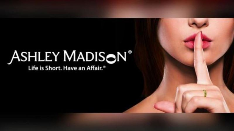 ashley madison account_New_Love_Times