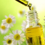 Superb Benefits Of Chamomile Essential Oil For Your Skin, Hair, And Health