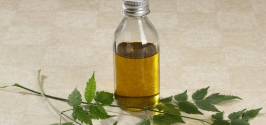 benefits of neem oil_New_Love_Times