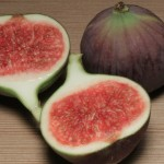 All You Need To Know About The Numerous Health Benefits Of Figs