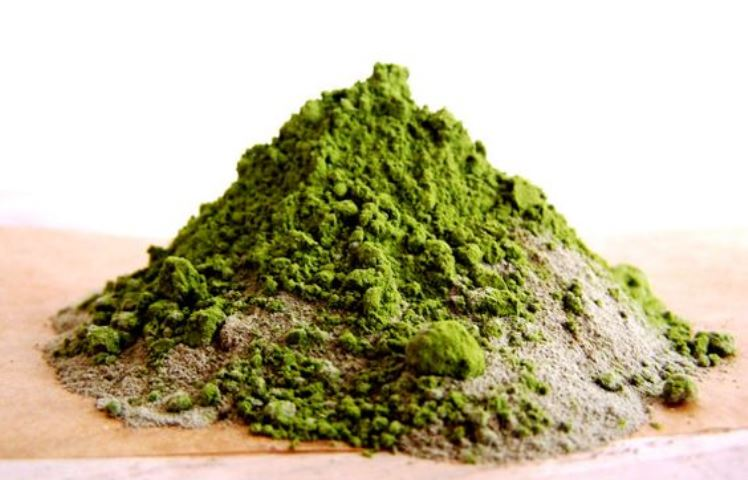benefits-of-seaweed3_New_Love_Times