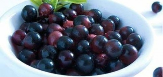 health benefits of acai berry_New_Love_Times