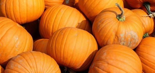 pumpkin face mask recipes_New_LovE_Times