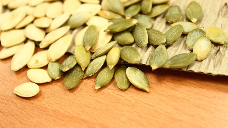 pumpkin seeds_new_love_times