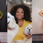 13 Plus Sized Celebrities Who Are Showing Everyone How To Love Themselves