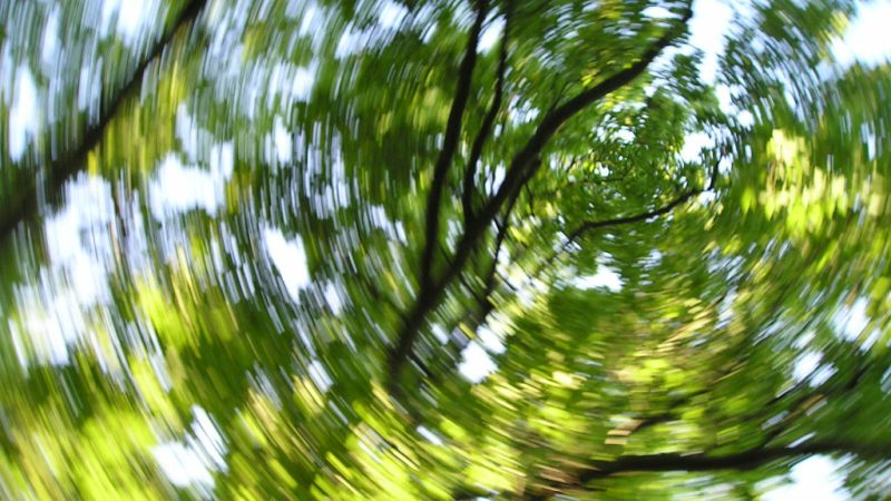 home remedies for dizziness_new_love_times