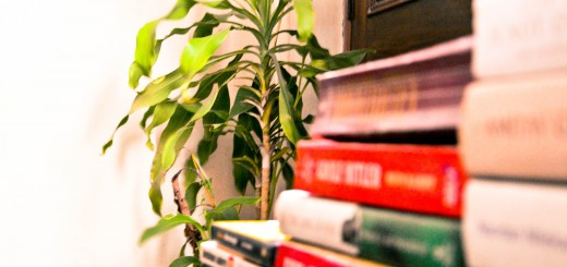 reading spot_New_Love_Times