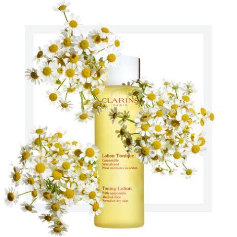 best face toner for oily skin_new_Love_Times