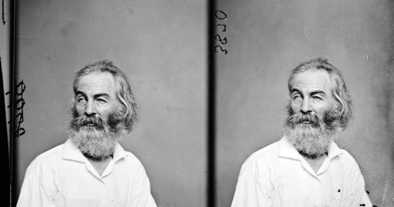 poems by walt whitman_New_Love_Times