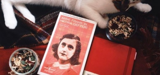anne frank diary of a young girl_New_Love_Times